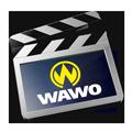 wawo_video_120